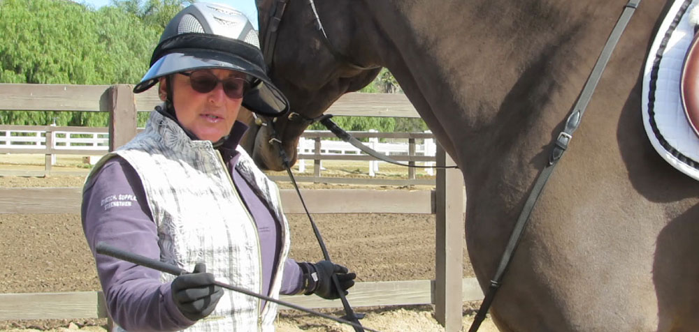 "Arlyn teaches; ""Your horse is your dance partner."" during a ground lesson and demonstration."
