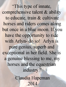 Horse Training for Adult Jumpers in San Diego California by Arlyn DeCicco