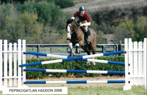 Horse Training for Jumior Jumpers in San Diego California